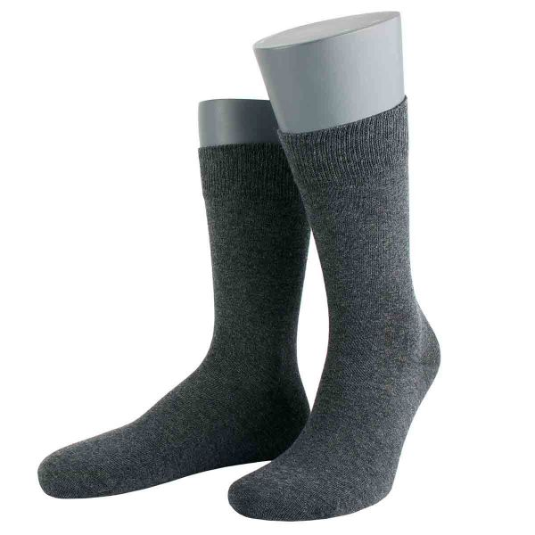 Herren Socken Wilox Gold Organic Cotton